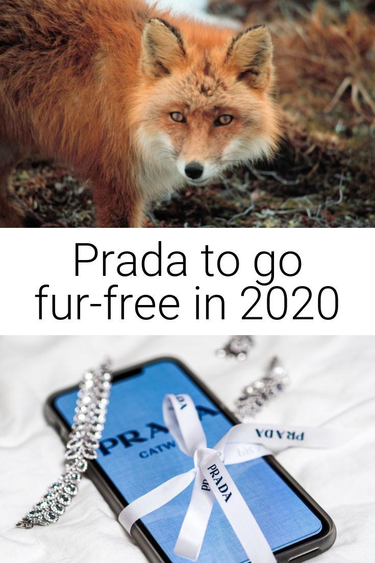 Prada to Go Fur Free!