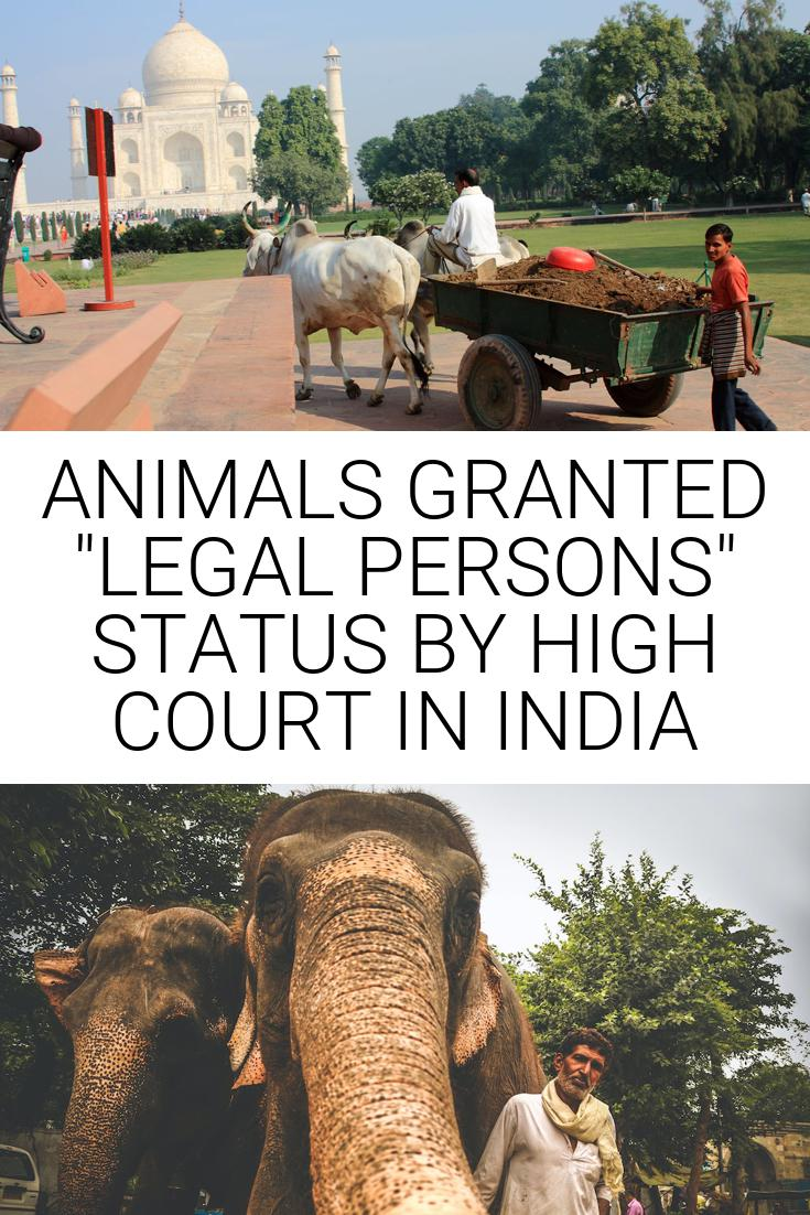 ANIMALS GRANTED \