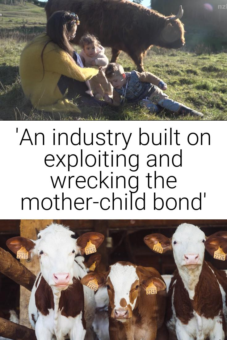 \'An industry built on exploiting and wrecking the mother-child bond\'