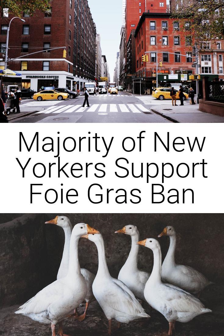 Majority of New Yorkers Support Foie Gras Ban