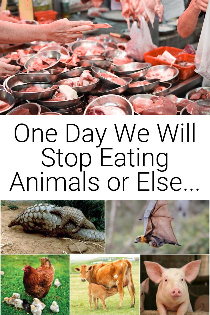 One Day We Will Stop Eating Animals or Else...
