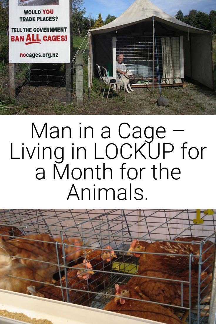 Man in a Cage – Living in LOCKUP for a Month for the Animals.