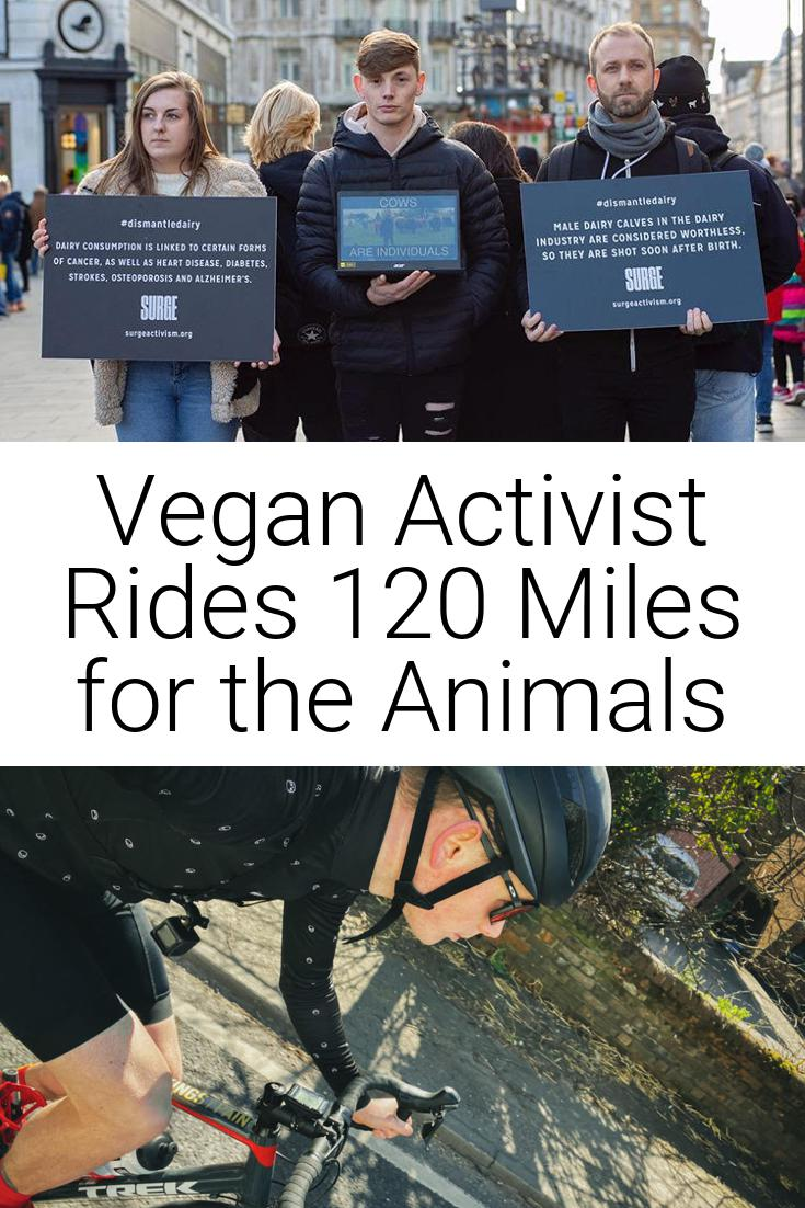 Vegan Activist Rides 120 Miles for the Animals