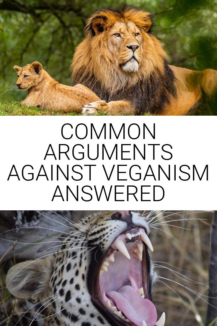 Common Arguments Against Veganism
