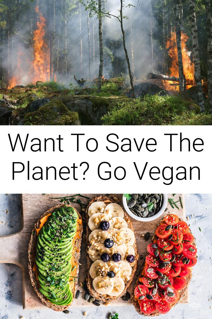 Want To Save The Planet? Go Vegan