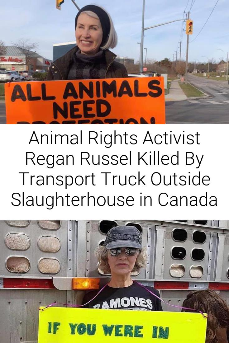 Animal Rights Activist Regan Russel Killed By Transport Truck Outside Slaughterhouse in Canada