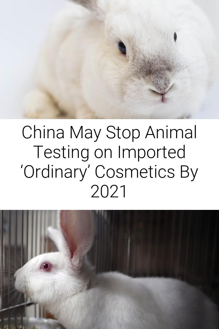 China May Stop Animal Testing on Imported 'Ordinary' Cosmetics By 2021