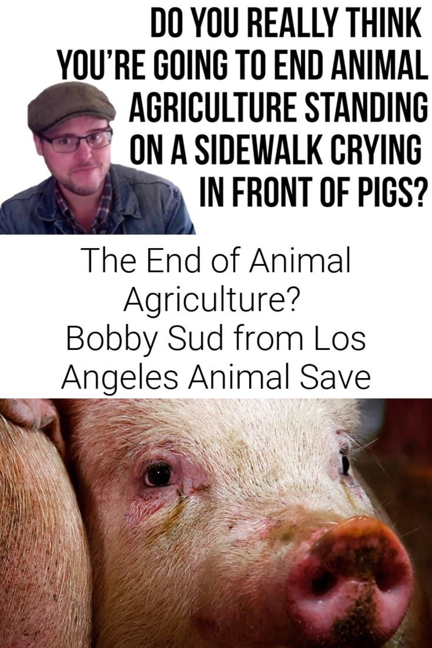 The End of Animal Agriculture?   Bobby Sud from Los Angeles Animal Save