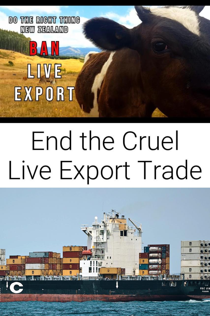 End the Cruel Live Export Trade