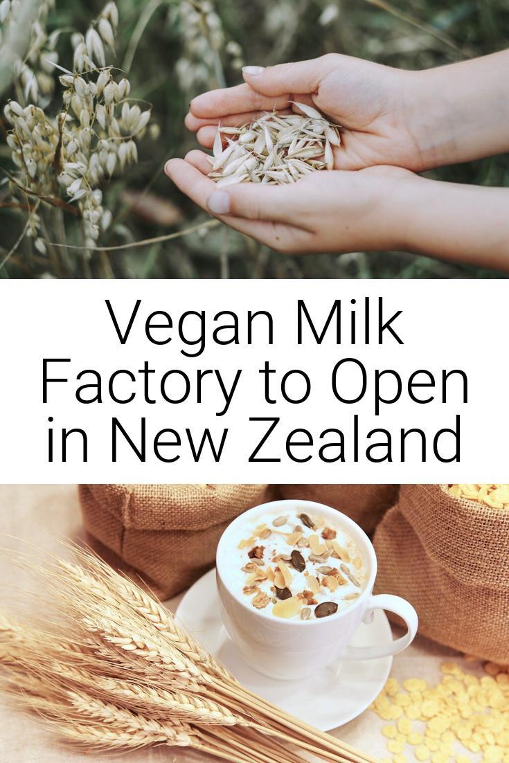 Vegan Milk Factory to Open in New Zealand
