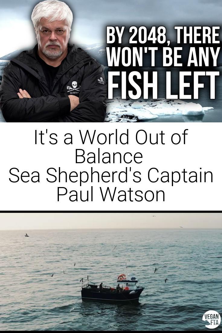 It\'s a World Out of Balance | Sea Shepherd\'s Captain Paul Watson