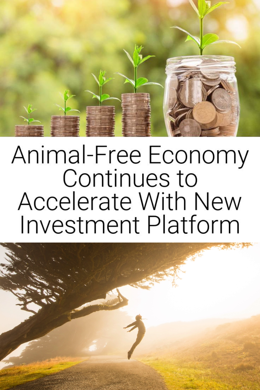 Animal-Free Economy Continues to Accelerate With New Investment Platform