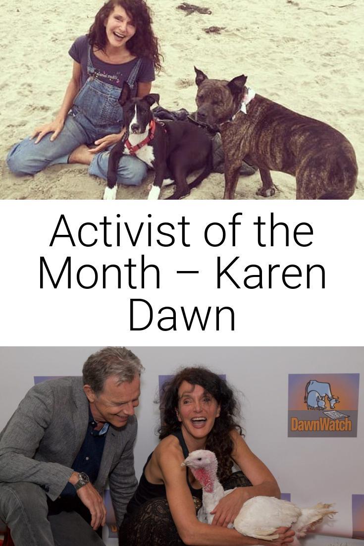 Activist of the Month – Karen Dawn