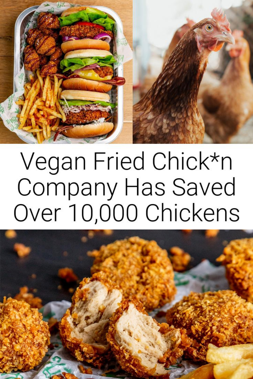 Vegan Fried Chick*n Company Has Saved Over 10,000 Chickens