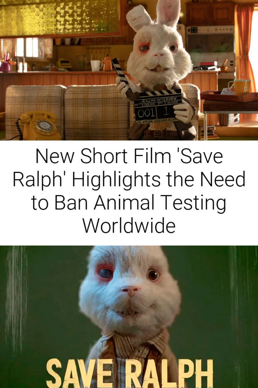 New Short Film \'Save Ralph\' Highlights the Need to Ban Animal Testing Worldwide