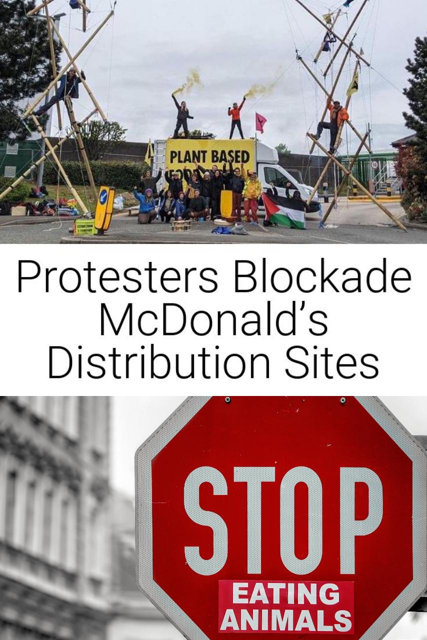 Protesters Blockade McDonald's Distribution Sites