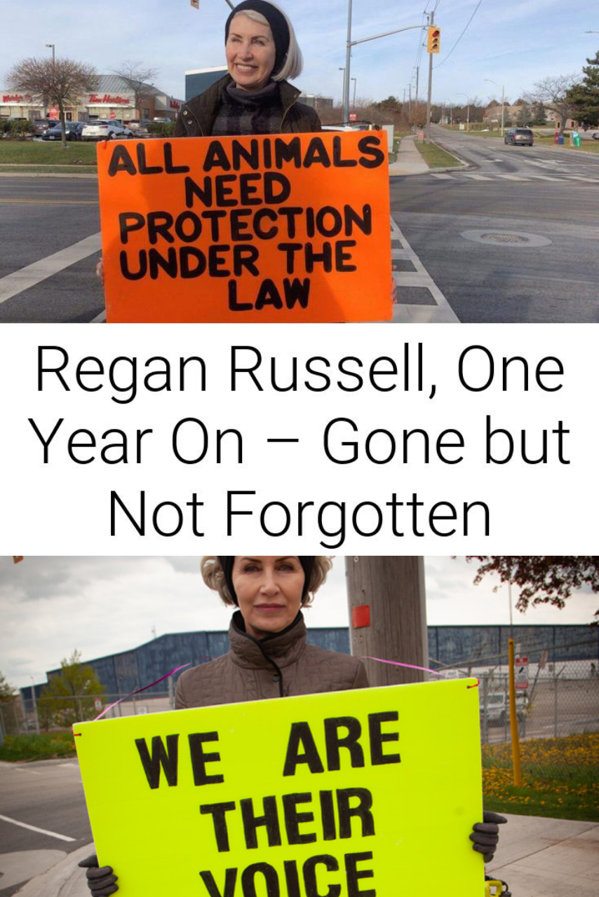 Regan Russell, One Year On – Gone but Not Forgotten