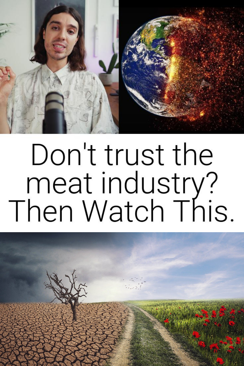 Don\'t trust the meat industry? Then Watch This.