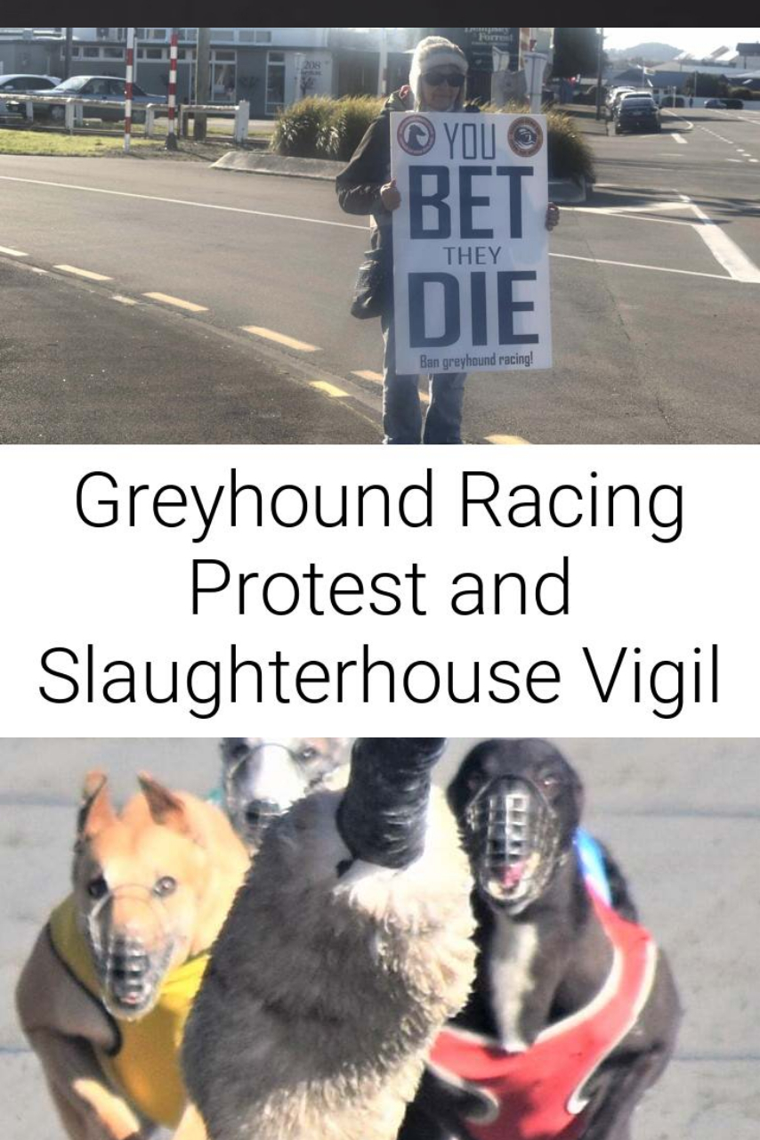 Greyhound Racing Protest and Slaughterhouse Vigil