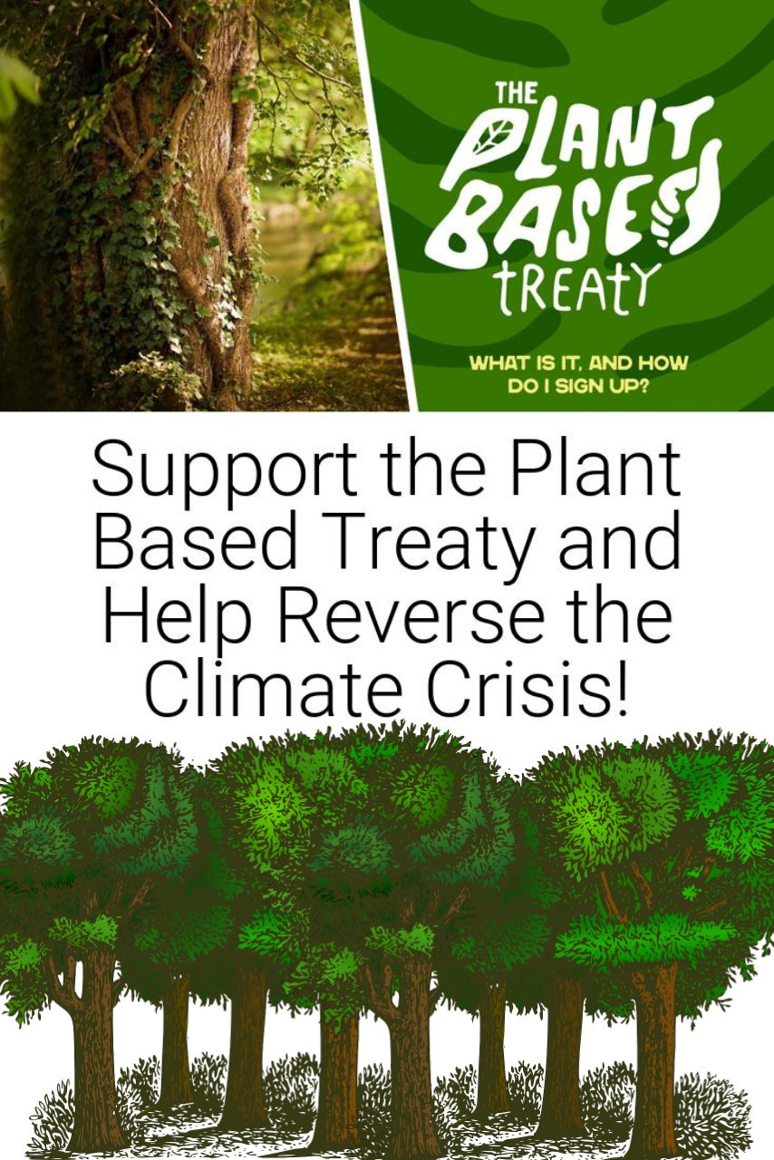 Support the Plant Based Treaty and Help Reverse the Climate Crisis!